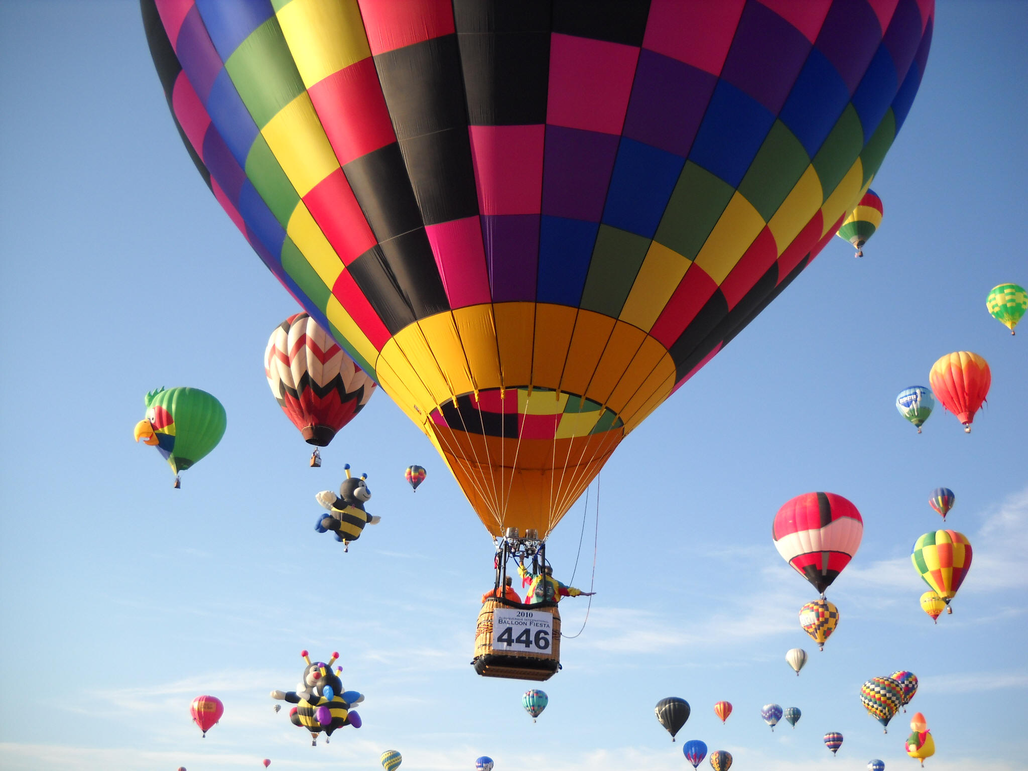 A Hot Air Balloon Proposal