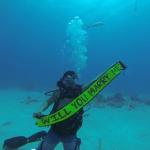 A Scuba Diving Proposal