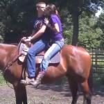 Horseback Proposal