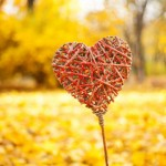 Outdoor Fall Proposal Ideas