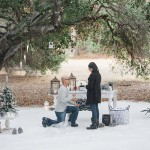 A Winter Wonderland Proposal in... Malibu!
