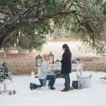 A Winter Wonderland Proposal in... Malibu!