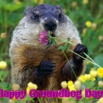 Groundhog Day Proposal Ideas