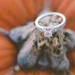 A Pumpkin Patch Romance Engagement Session