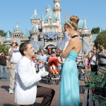Real Fairytale Proposal at Disneyland