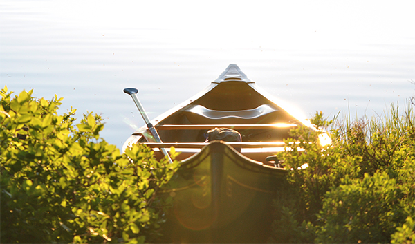 Boat ride proposal idea