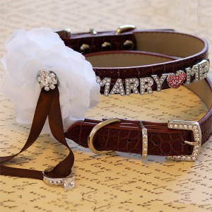 marry me collar ebay