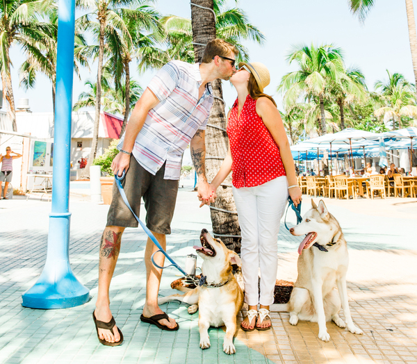 Must Love Dogs Proposal