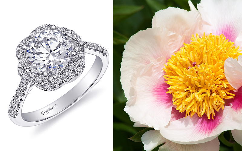 peony engagement ring coast diamond