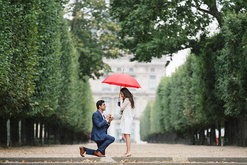 paris proposal fan photography