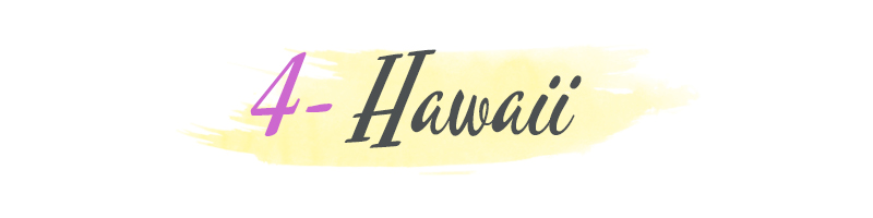 hawaii proposal banner