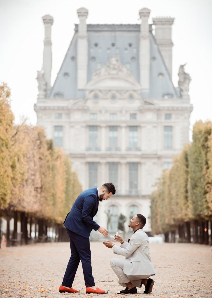love proposal paris engagement ring mangagement ring